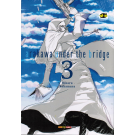 Arakawa Under The Bridge nº 03