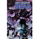 The Walking Dead nº 29 (Os Mortos Vivos)