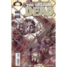 The Walking Dead nº 16 (Os Mortos Vivos)