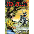 Tex Willer nº 22